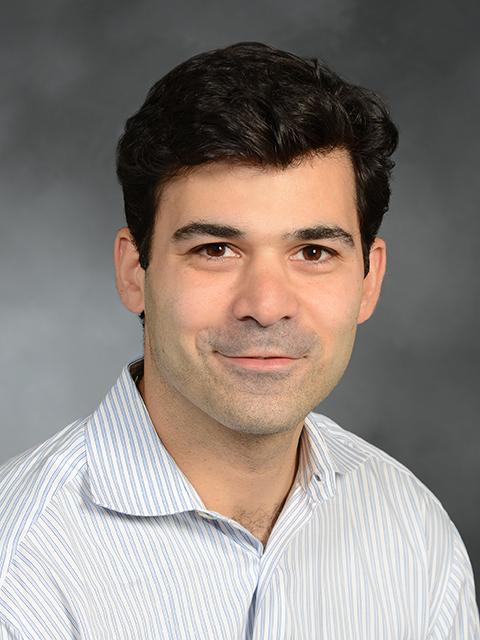 Paul Riegelhaupt, MD